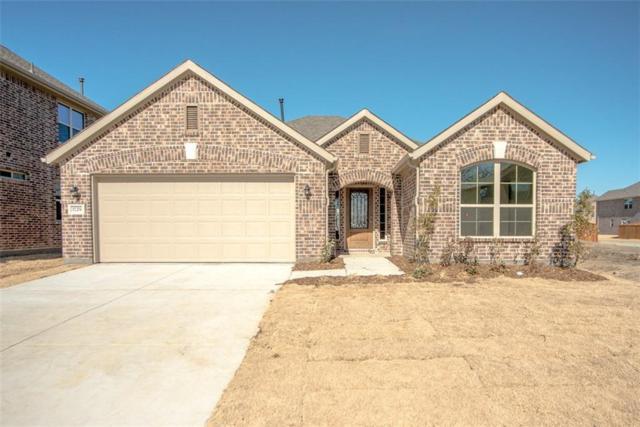 1729 Ridge Creek Lane, Aubrey, TX 76227 (MLS #13726172) :: Team Hodnett