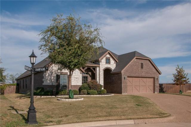 118 Champagne Drive, Aledo, TX 76008 (MLS #13732052) :: Potts Realty Group