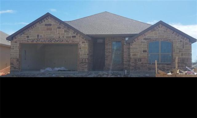 1504 Oak Tree Drive, Denton, TX 76209 (MLS #13747041) :: The Chad Smith Team