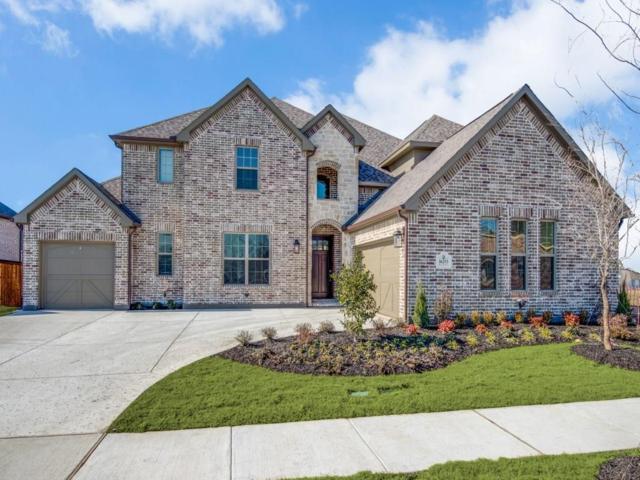 16253 Moss Haven Lane, Frisco, TX 75068 (MLS #13752523) :: Team Hodnett