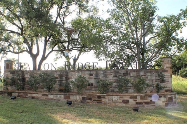 LOT 37 Paloma Court, Glen Rose, TX 76043 (MLS #13753237) :: Robinson Clay Team