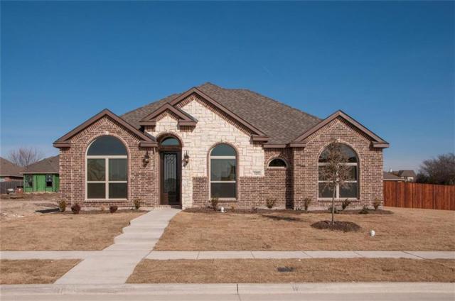 123 Spruce Street, Red Oak, TX 75154 (MLS #13753354) :: Team Hodnett