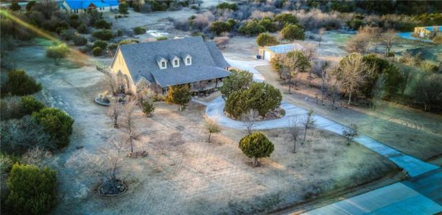 113 Scenic Ridge Drive, Weatherford, TX 76087 (MLS #13758353) :: Team Hodnett