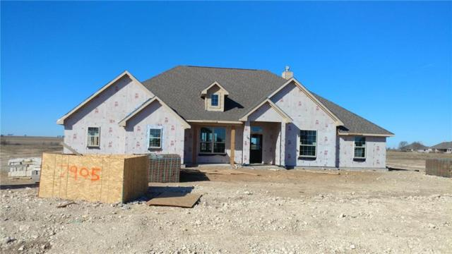 7905 Grassland Drive, Godley, TX 76044 (MLS #13760648) :: Team Hodnett