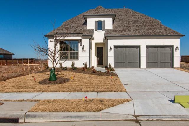 2920 Bold Ruler Road, Celina, TX 75009 (MLS #13761531) :: Team Hodnett