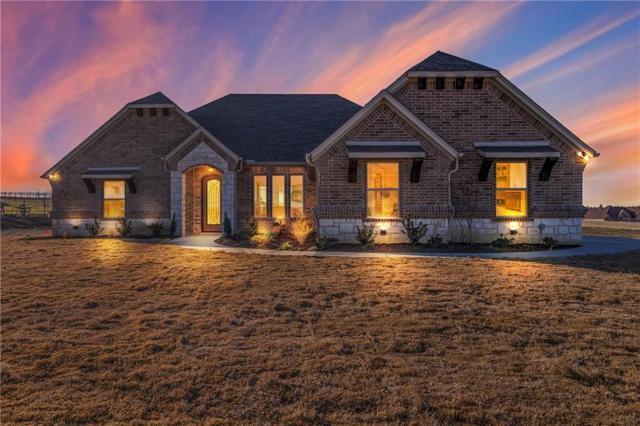 14528 Spring Ranch Road, Godley, TX 76044 (MLS #13761998) :: Team Hodnett