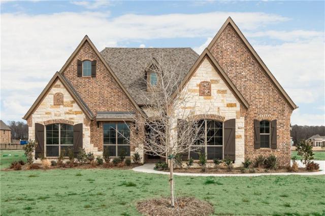 1511 Sun Valley Court, Lucas, TX 75002 (MLS #13763120) :: Team Hodnett