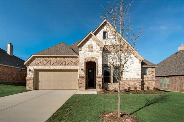 221 Canterbury Court, Midlothian, TX 76065 (MLS #13769054) :: Team Hodnett