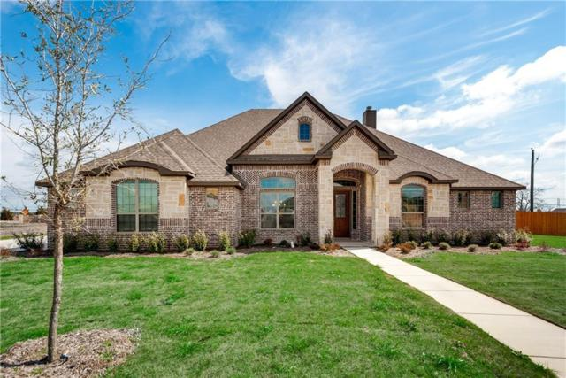 144 Diamond Lane, Waxahachie, TX 75165 (MLS #13771962) :: Team Hodnett