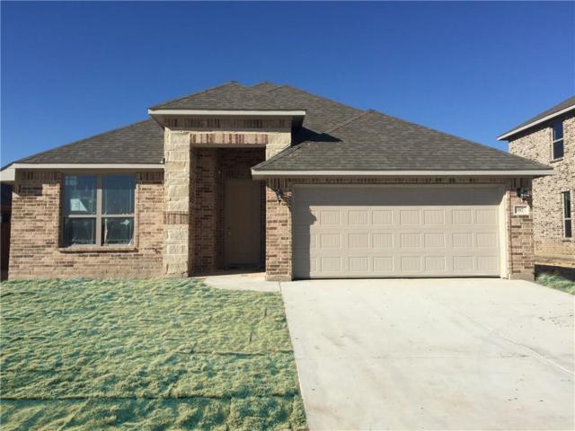 917 Misty Bray Drive, Saginaw, TX 76179 (MLS #13772044) :: Team Hodnett
