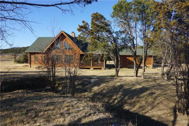 1318 Indigo Bush Court, Possum Kingdom Lake, TX 76449 (MLS #13773924) :: Team Hodnett