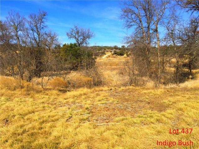 Lt 437 Indigo Bush, Possum Kingdom Lake, TX 76449 (MLS #13773949) :: Team Hodnett