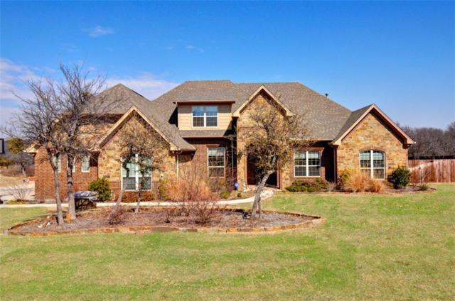 141 Turkey Creek Drive, Aledo, TX 76008 (MLS #13774660) :: Team Hodnett