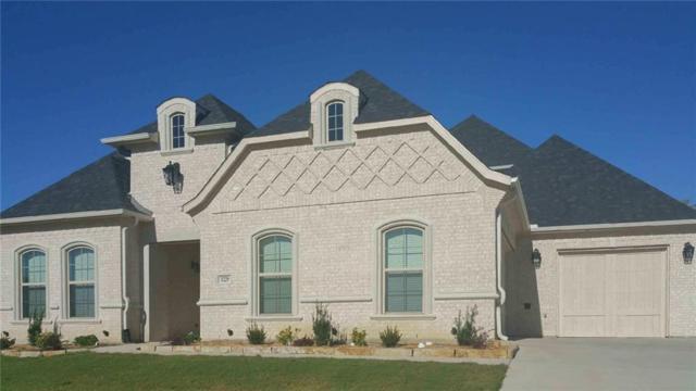 1229 Eagle Glen Pass, Gunter, TX 75058 (MLS #13779364) :: Team Hodnett