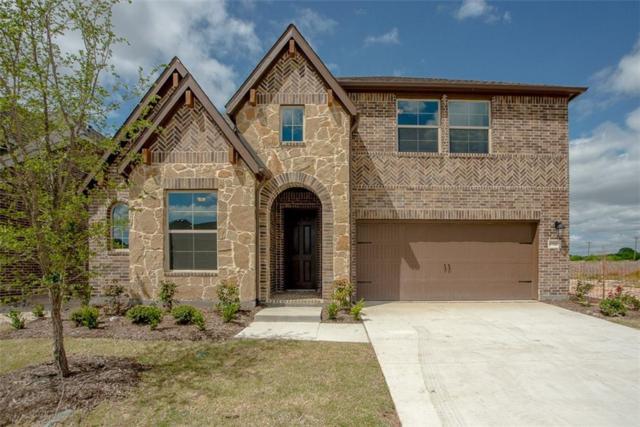 6516 Dynamite Drive, Mckinney, TX 75070 (MLS #13780264) :: RE/MAX Landmark
