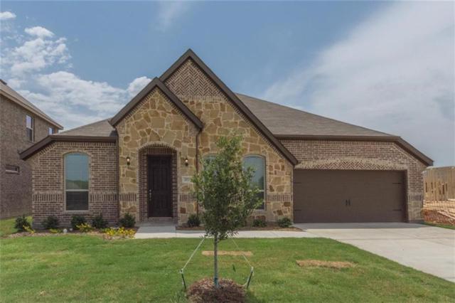 277 Ovaletta, Justin, TX 76247 (MLS #13780338) :: The Real Estate Station