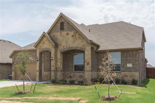 279 Ovaletta, Justin, TX 76247 (MLS #13780440) :: The Real Estate Station