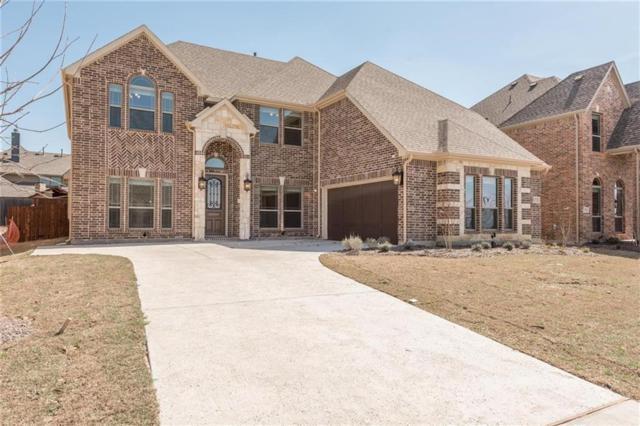 13732 Sheridan Street, Frisco, TX 75035 (MLS #13782561) :: Team Hodnett