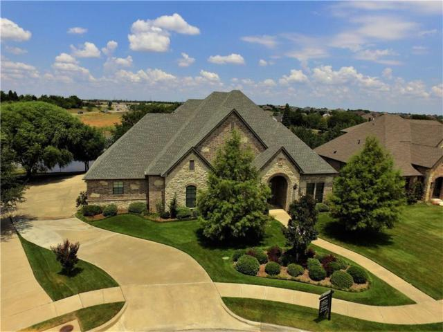 169 Overlook Drive, Sunnyvale, TX 75182 (MLS #13789313) :: RE/MAX Town & Country