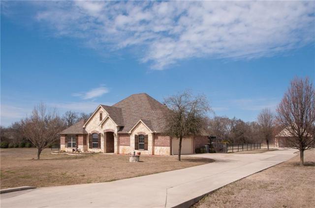 164 Star Point Lane, Weatherford, TX 76088 (MLS #13790367) :: Team Hodnett