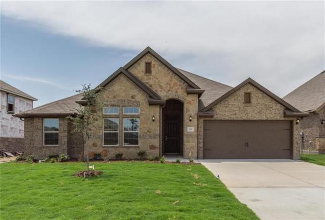 281 Ovaletta, Justin, TX 76247 (MLS #13799195) :: The Real Estate Station