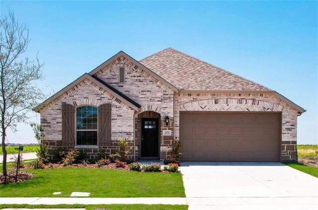 1573 Cedar Crest, Forney, TX 75126 (MLS #13804341) :: Team Hodnett