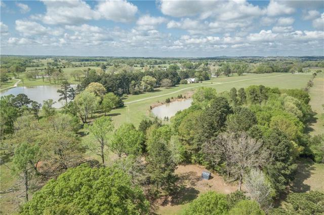 14425 Caddo Creek Circle, Larue, TX 75770 (MLS #13806770) :: The Rhodes Team