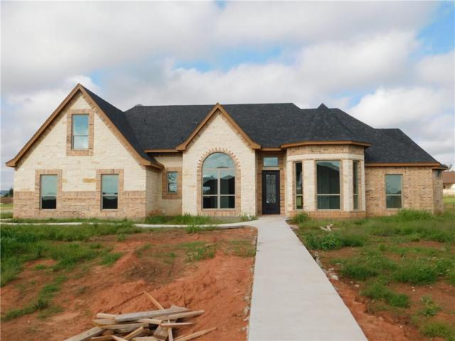 134 Rising Star Drive, Abilene, TX 79606 (MLS #13815087) :: The Paula Jones Team | RE/MAX of Abilene