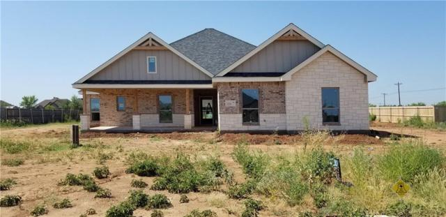 225 Kristie Path, Abilene, TX 79602 (MLS #13816461) :: RE/MAX Landmark
