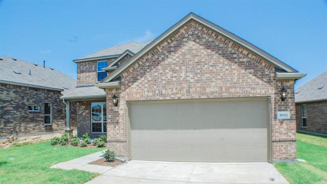 16012 Royston Street, Frisco, TX 75034 (MLS #13816651) :: Team Hodnett