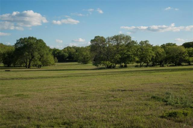 421 Collinwood Drive, Fairview, TX 75069 (MLS #13819251) :: The Real Estate Station