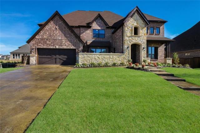 730 Star Meadow Drive, Prosper, TX 75078 (MLS #13820308) :: Kimberly Davis & Associates