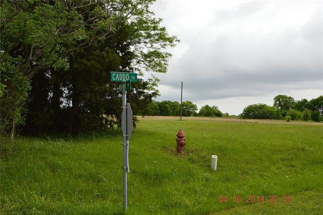oo Caddo Trail, East Tawakoni, TX 75472 (MLS #13822166) :: The FIRE Group at Keller Williams