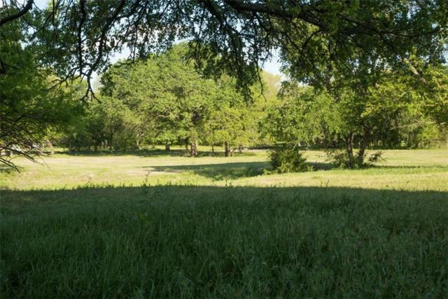 381 Collinwood Drive, Fairview, TX 75069 (MLS #13824368) :: The Real Estate Station