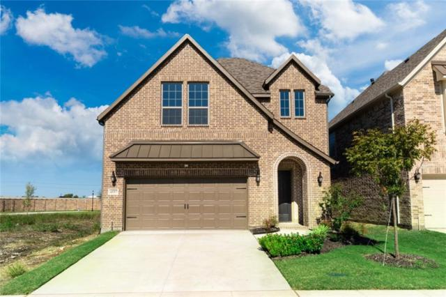 4557 El Paso Drive, Plano, TX 75024 (MLS #13827171) :: The Hornburg Real Estate Group