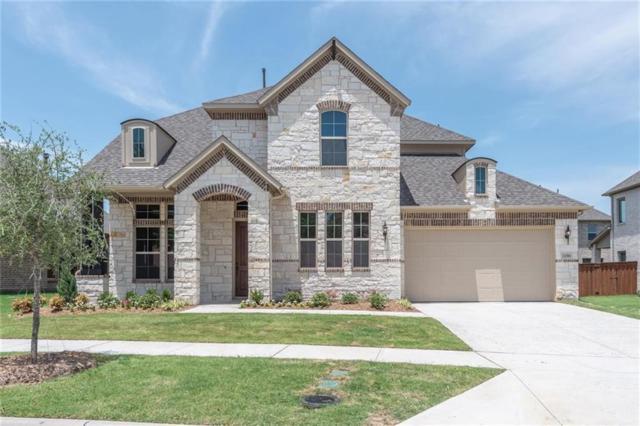 12384 Haskell Street, Frisco, TX 75035 (MLS #13829173) :: Team Hodnett
