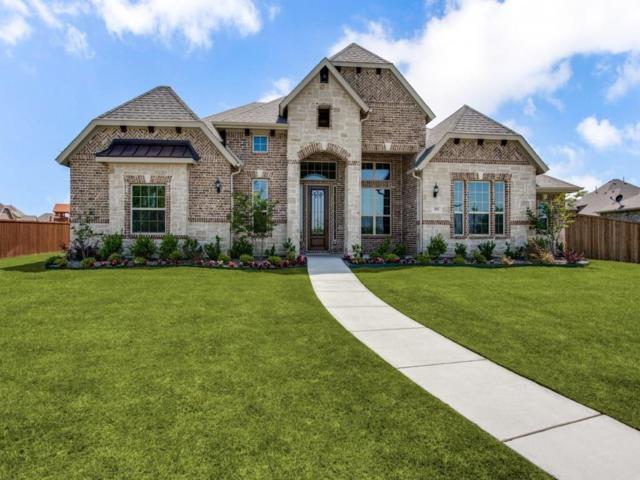 351 Vista Park, Sunnyvale, TX 75182 (MLS #13832418) :: Team Hodnett