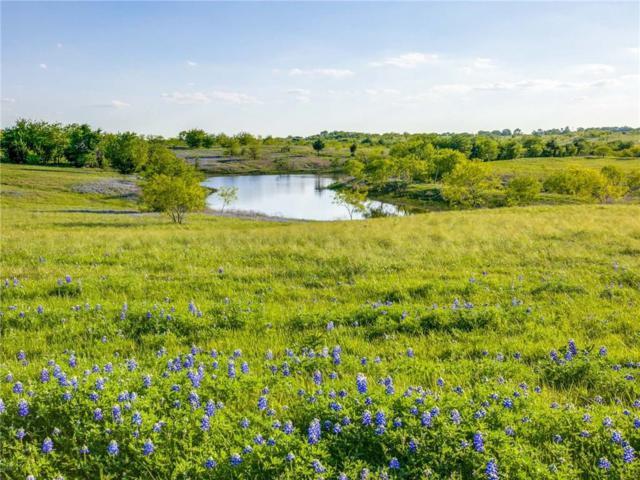 672 Alsdorf Road, Ennis, TX 75119 (MLS #13833349) :: Team Hodnett