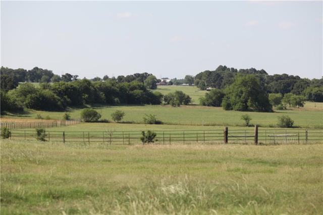 3800 Dr Griffin Road, Cross Roads, TX 76227 (MLS #13842056) :: Team Hodnett