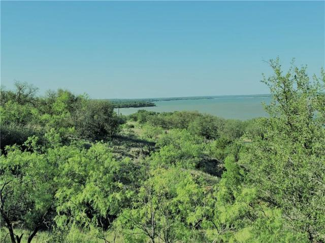459 Feather Bay Drive, Brownwood, TX 76801 (MLS #13844461) :: The Chad Smith Team