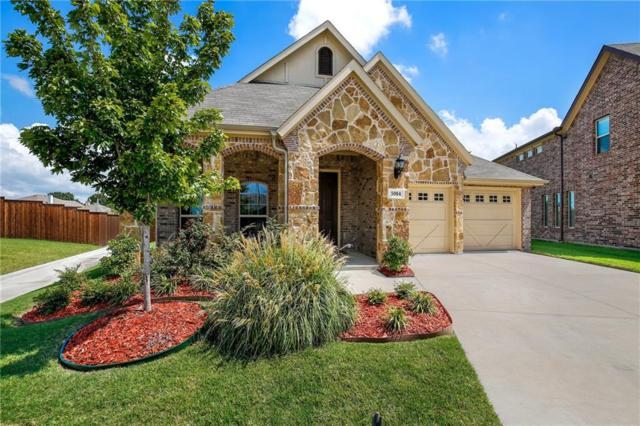 5914 Begonia Drive, Rowlett, TX 75089 (MLS #13851654) :: RE/MAX Town & Country