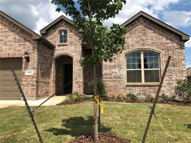 3708 Ann Arbor Lane, Denton, TX 76207 (MLS #13852132) :: Magnolia Realty