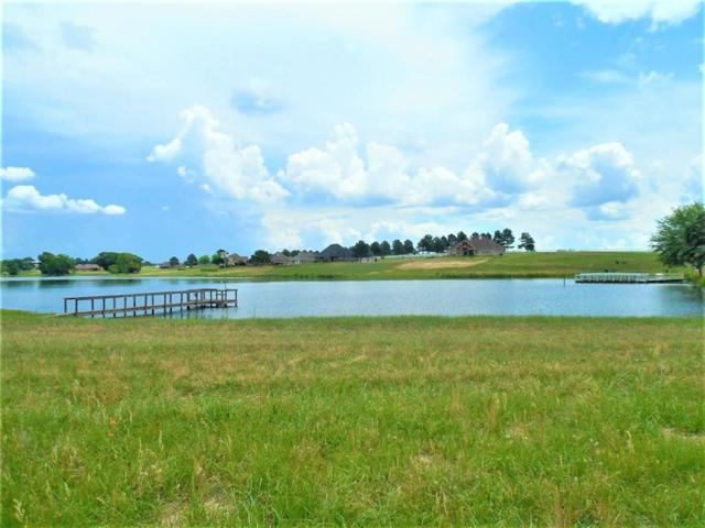 16891 Stallion Shores Court, Lindale, TX 75771 (MLS #13852683) :: Frankie Arthur Real Estate
