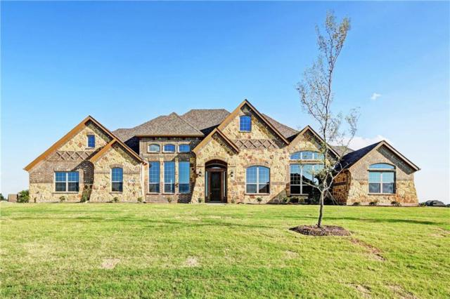 456 Silver Spur Trail, Rockwall, TX 75032 (MLS #13853441) :: Team Hodnett