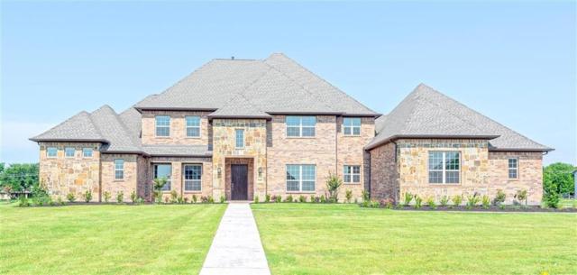 325 Bastrop, Fairview, TX 75069 (MLS #13856564) :: Team Hodnett