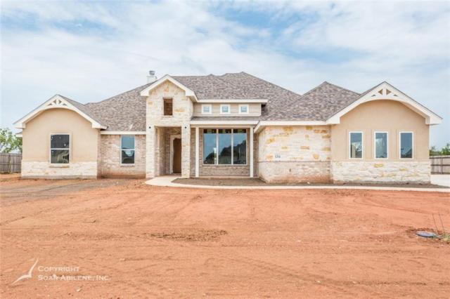 134 Angie Lane, Abilene, TX 79602 (MLS #13856874) :: The Paula Jones Team | RE/MAX of Abilene