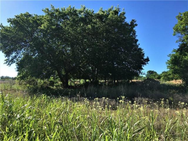 0 N Addison Drive, Hudson Oaks, TX 76087 (MLS #13864537) :: Magnolia Realty