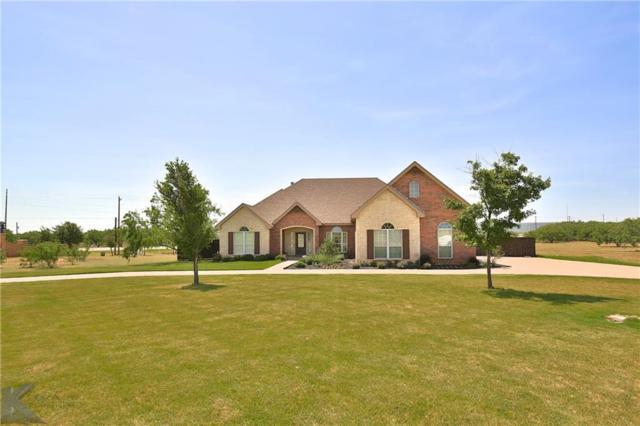 101 Stallion Road, Abilene, TX 79606 (MLS #13866246) :: Kimberly Davis & Associates