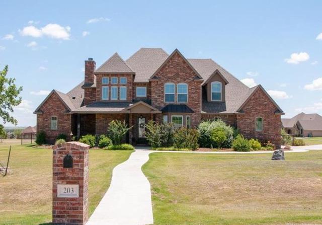 203 Creek Wood Drive, Aledo, TX 76008 (MLS #13866890) :: Team Hodnett