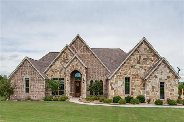 169 Pinnacle Peak Lane, Weatherford, TX 76087 (MLS #13869489) :: Team Hodnett